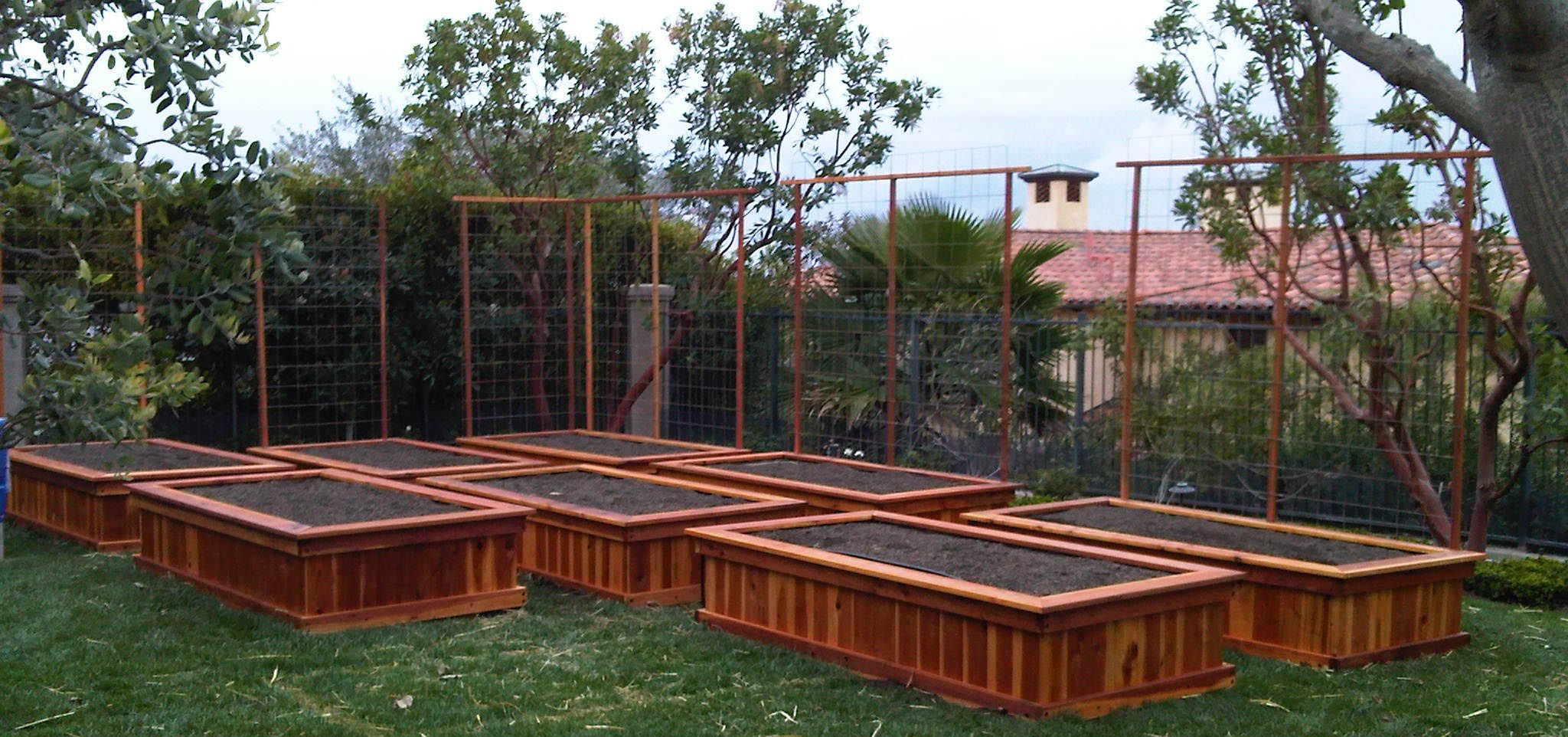 Beau Best Wood For Raised Vegetable Garden