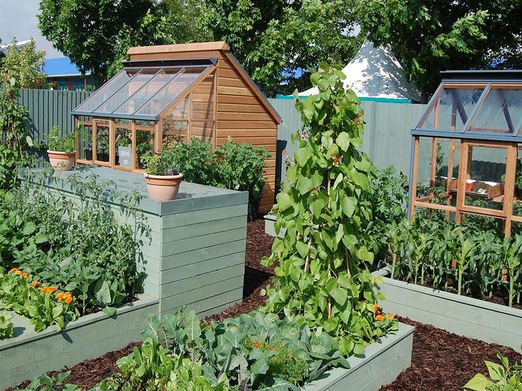 Container Vegetable Garden Plans – Container Vegetable Gardening Plans
