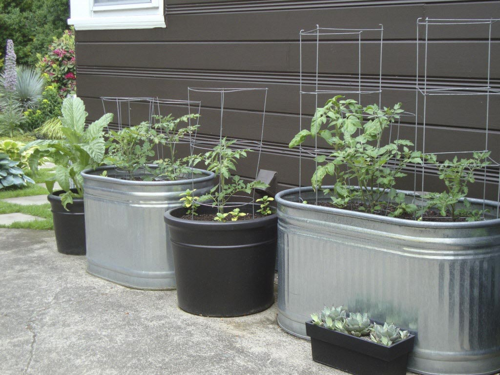 Container Vegetable Gardening Pot Size