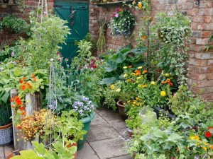 DIY Patio Vegetable Garden