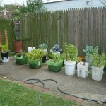 DIY Vegetable Garden Containers