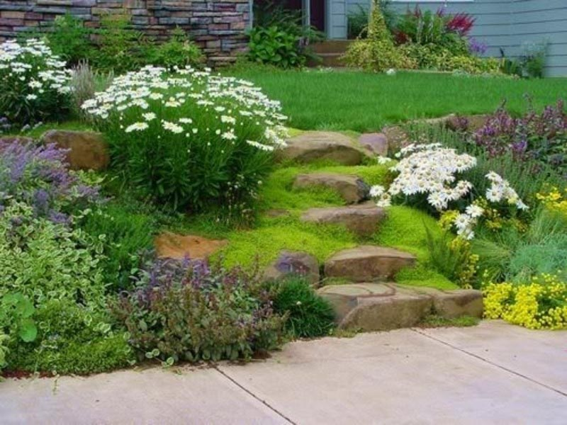 Easy Landscape Ideas for Small Yards