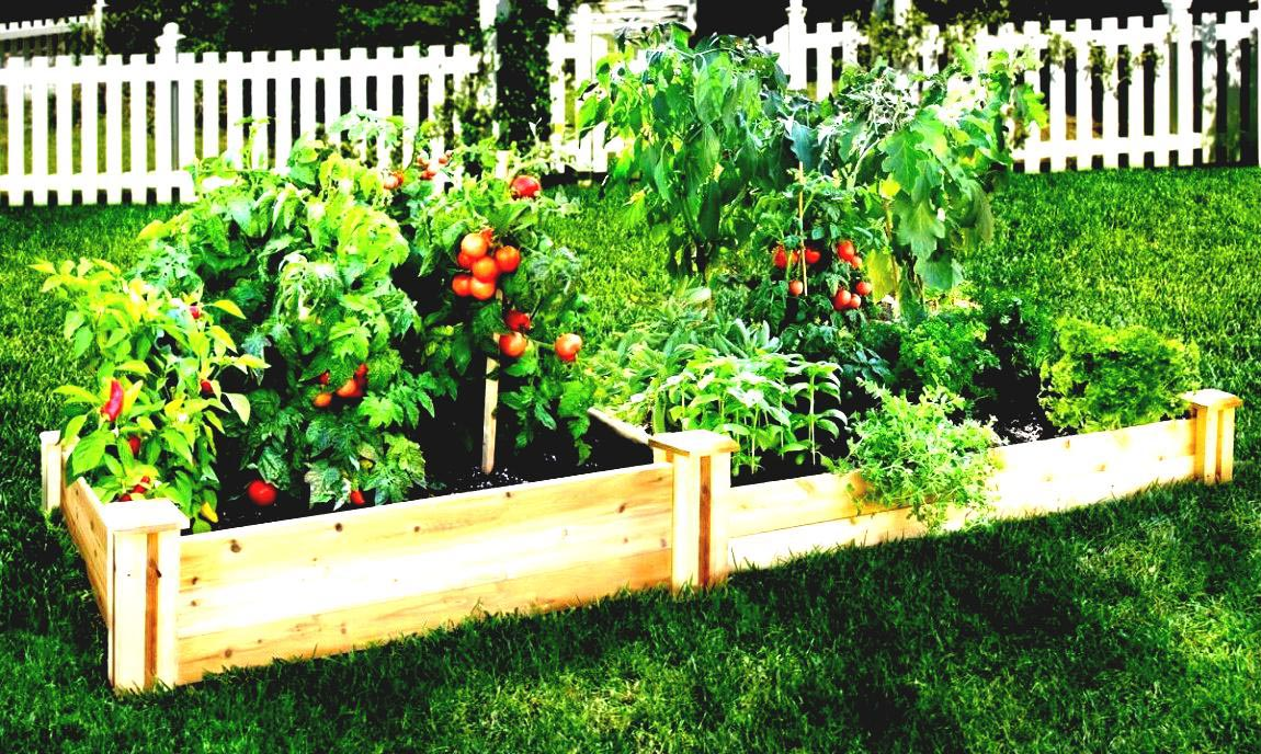 Easy patio vegetable garden garden design ideas for Easy garden patio ideas