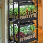 Easy Small Vegetable Garden Ideas