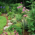 Fence Border Garden Plans