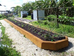 Free Raised Bed Vegetable Garden Planner