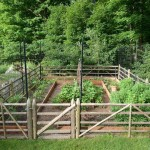 Free Vegetable Garden Planner Software