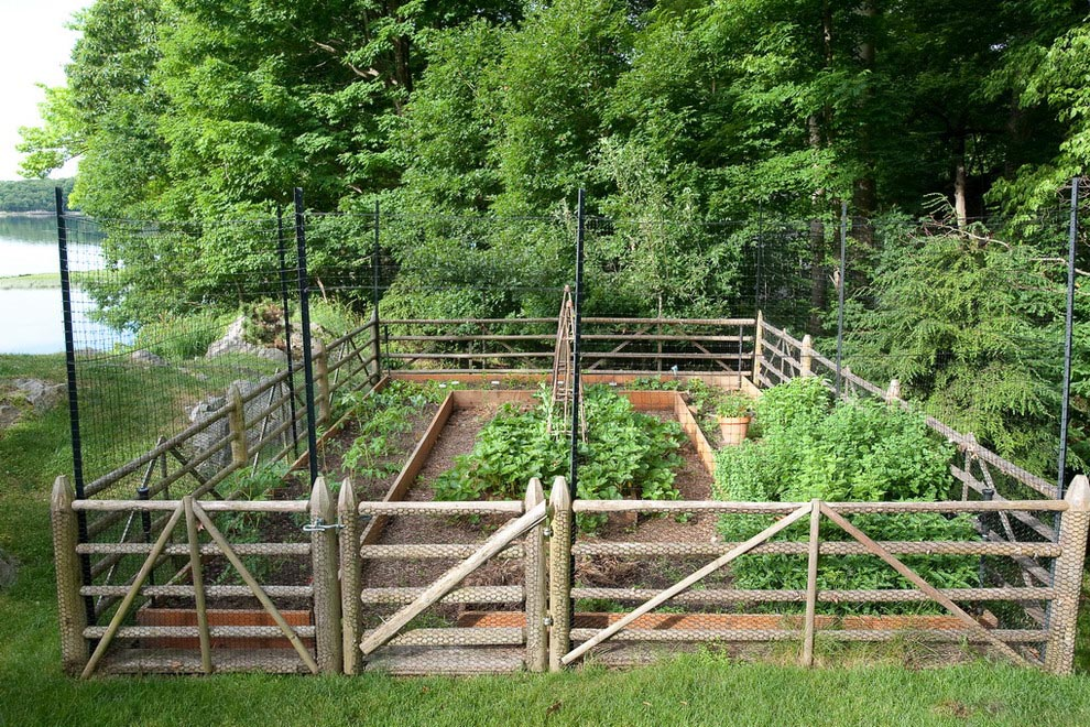 Free Vegetable Garden Planner Software