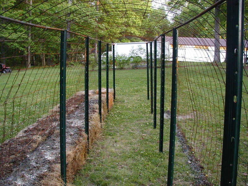 Garden Fence Posts Metal