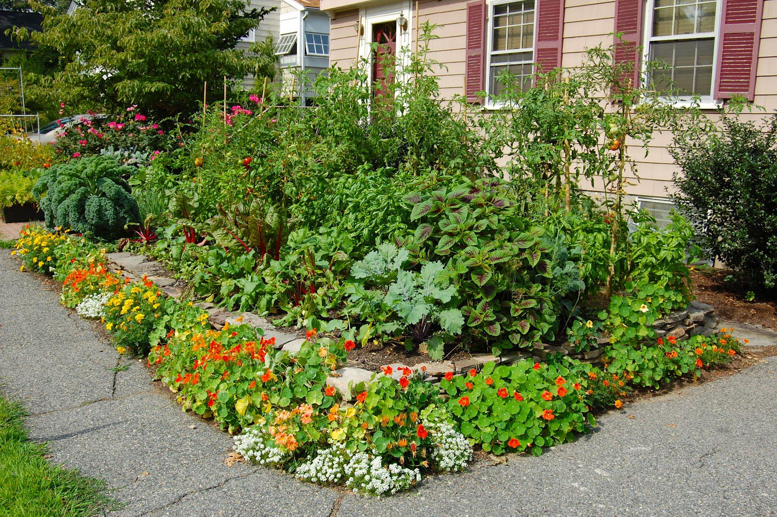 Garden in the Front Yard
