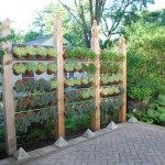 Garden Privacy Fence Screen