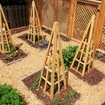 Garden Privacy Screen Trellis