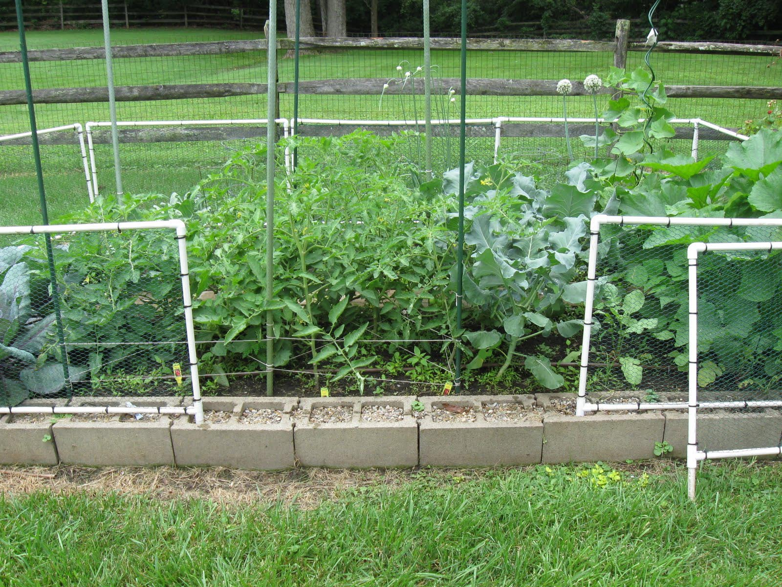 Garden Wire Fence Panels