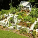 Home Vegetable Garden Plans