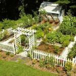 Home Vegetable Garden Plans