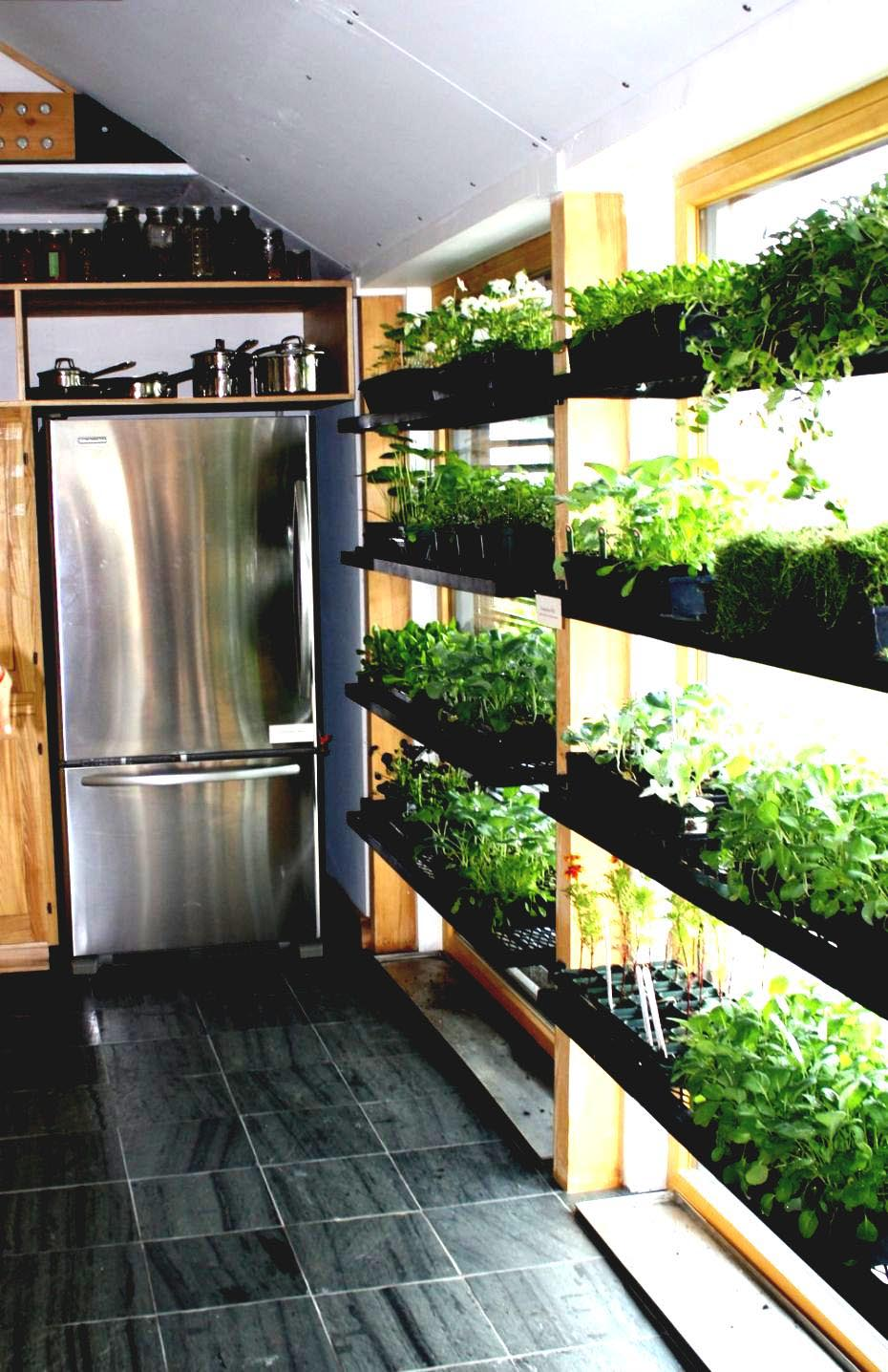 Indoor Vegetable Garden Apartment