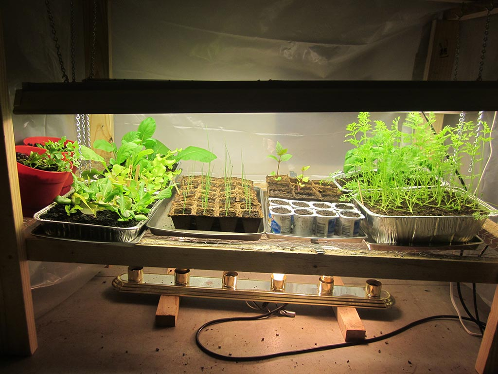 Indoor Vegetable Garden Lights
