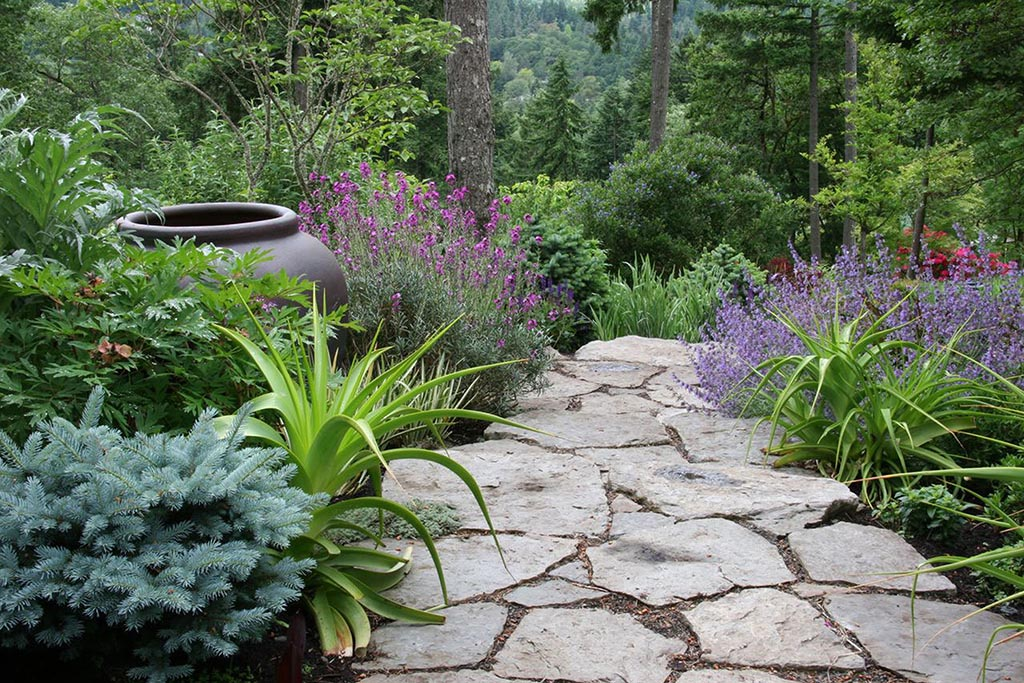 Landscaping Ideas for Small Side Yards