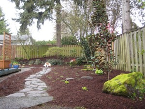 Landscaping Ideas for Small Yards with Dogs
