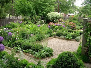 Low Maintenance Garden Beds