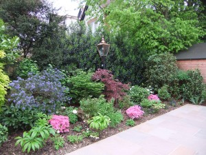Low Maintenance Garden Plans