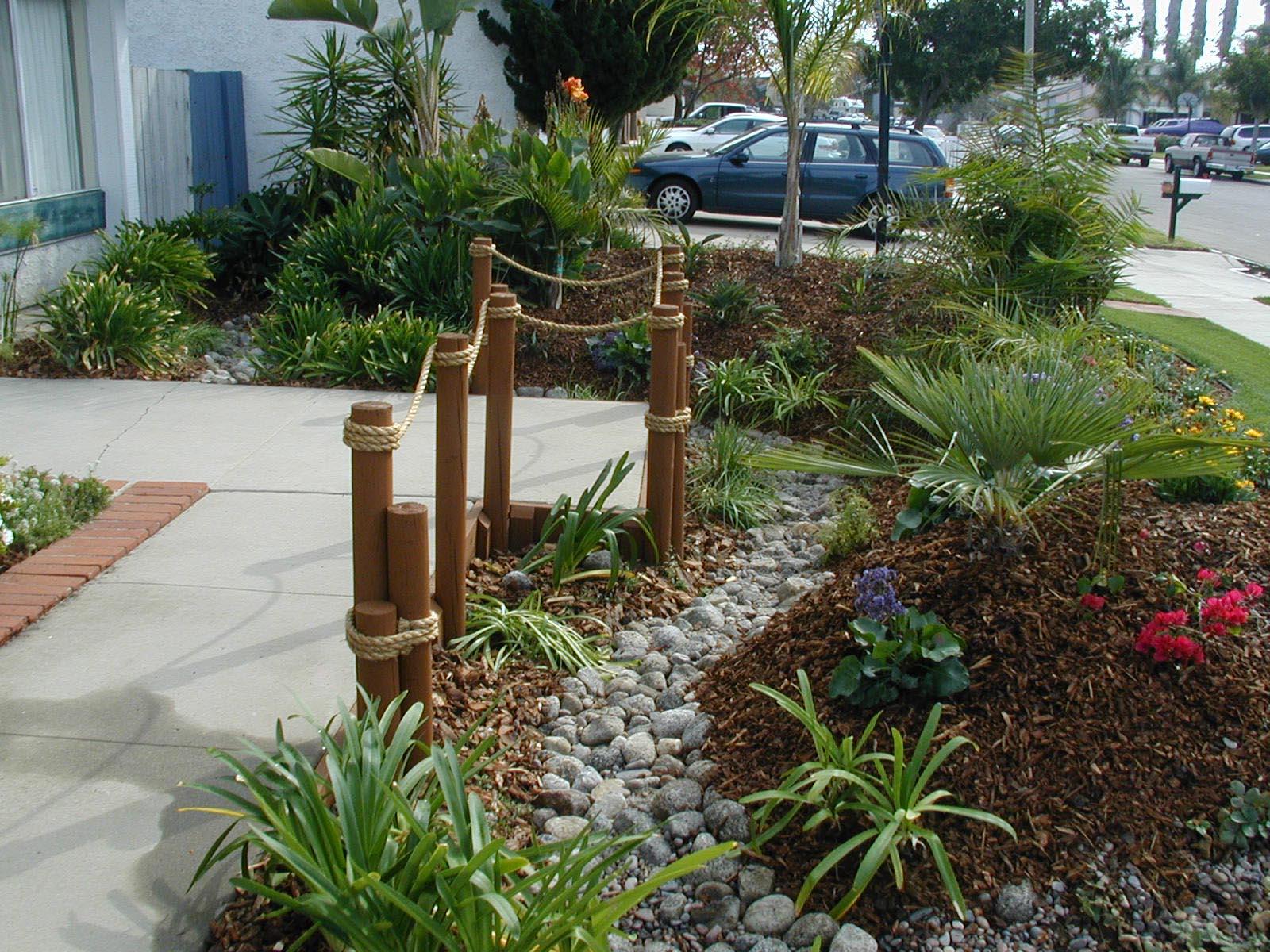 Low Maintenance Plants for Front Garden