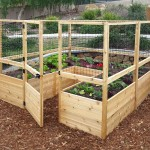 Make Raised Bed Vegetable Garden