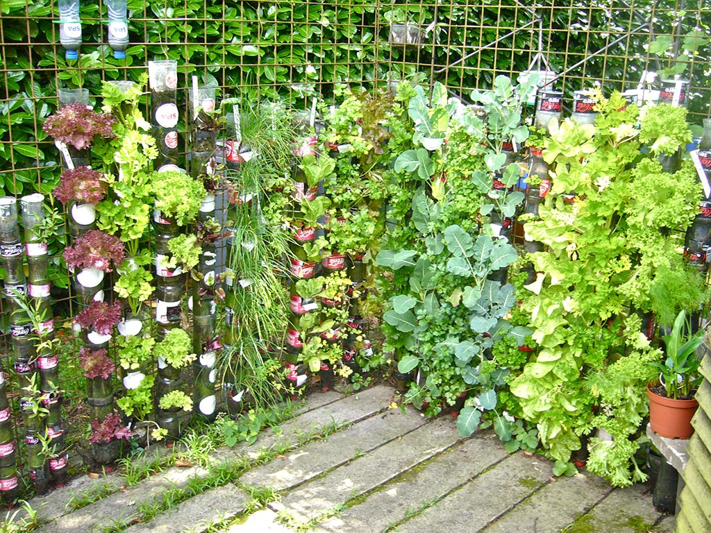Excursus to Container Vegetable Gardening Garden Design Ideas