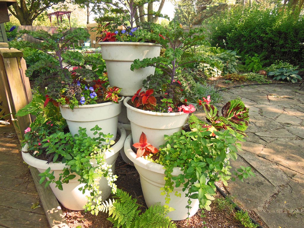 Patio Container Vegetable Garden Ideas