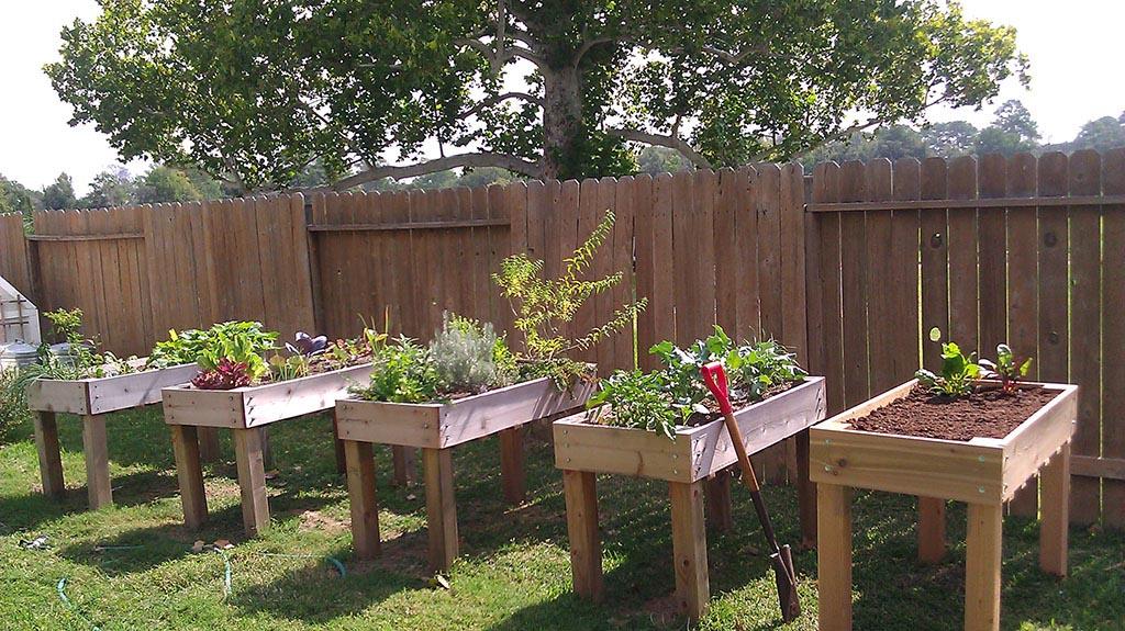 Patio Garden Boxes for Vegetables