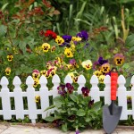Picket Fence Garden Border