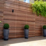 Privacy Garden Screening Ideas