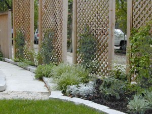 Privacy Screen Garden Ideas