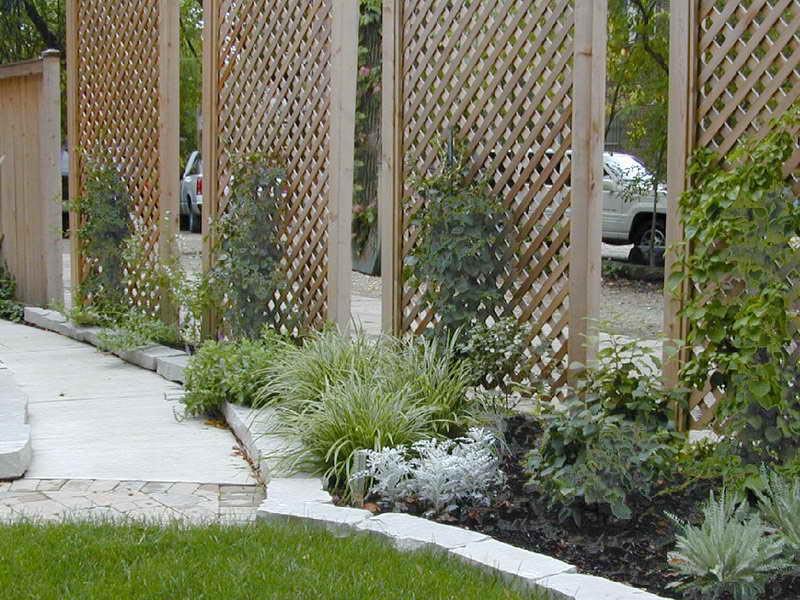 Privacy Screen Garden Ideas