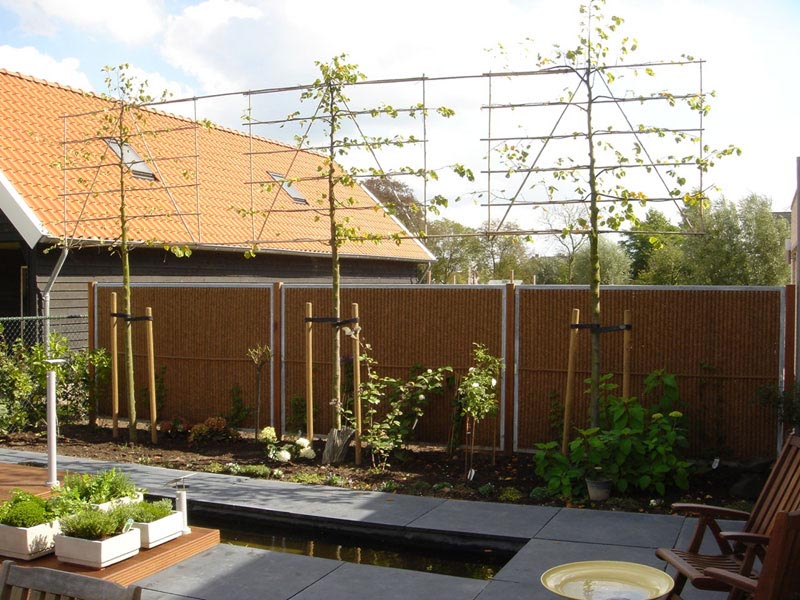Privacy Screens for the Garden