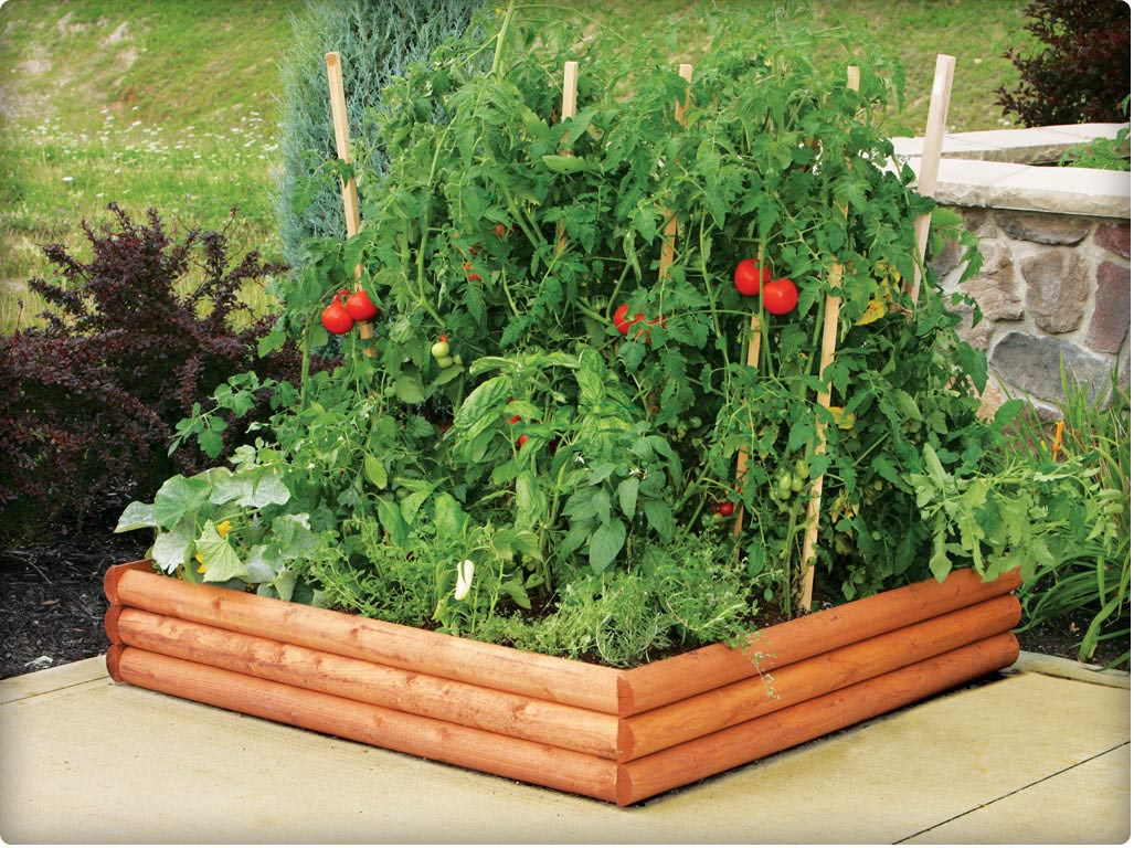Raised Bed Vegetable Gardening Tips