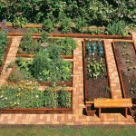 Raised Vegetable Garden Beds Layout