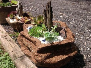 Rock Garden Small Front Yard