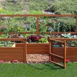 Small Area Vegetable Gardening