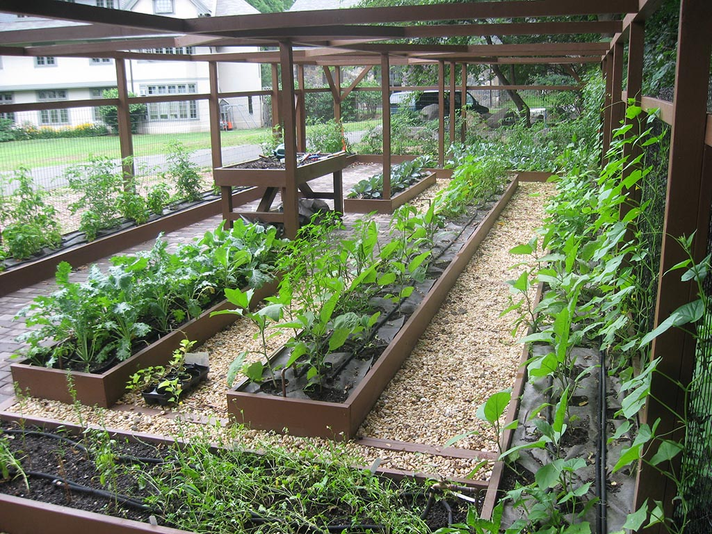 Small Backyard Vegetable Garden Design