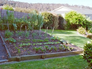 Small Fruit and Vegetable Gardens