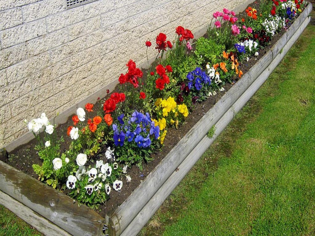 Бордюр из цветов с описанием