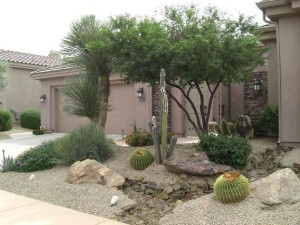 Small Yard Desert Landscaping