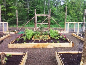 The Vegetable Garden Planner