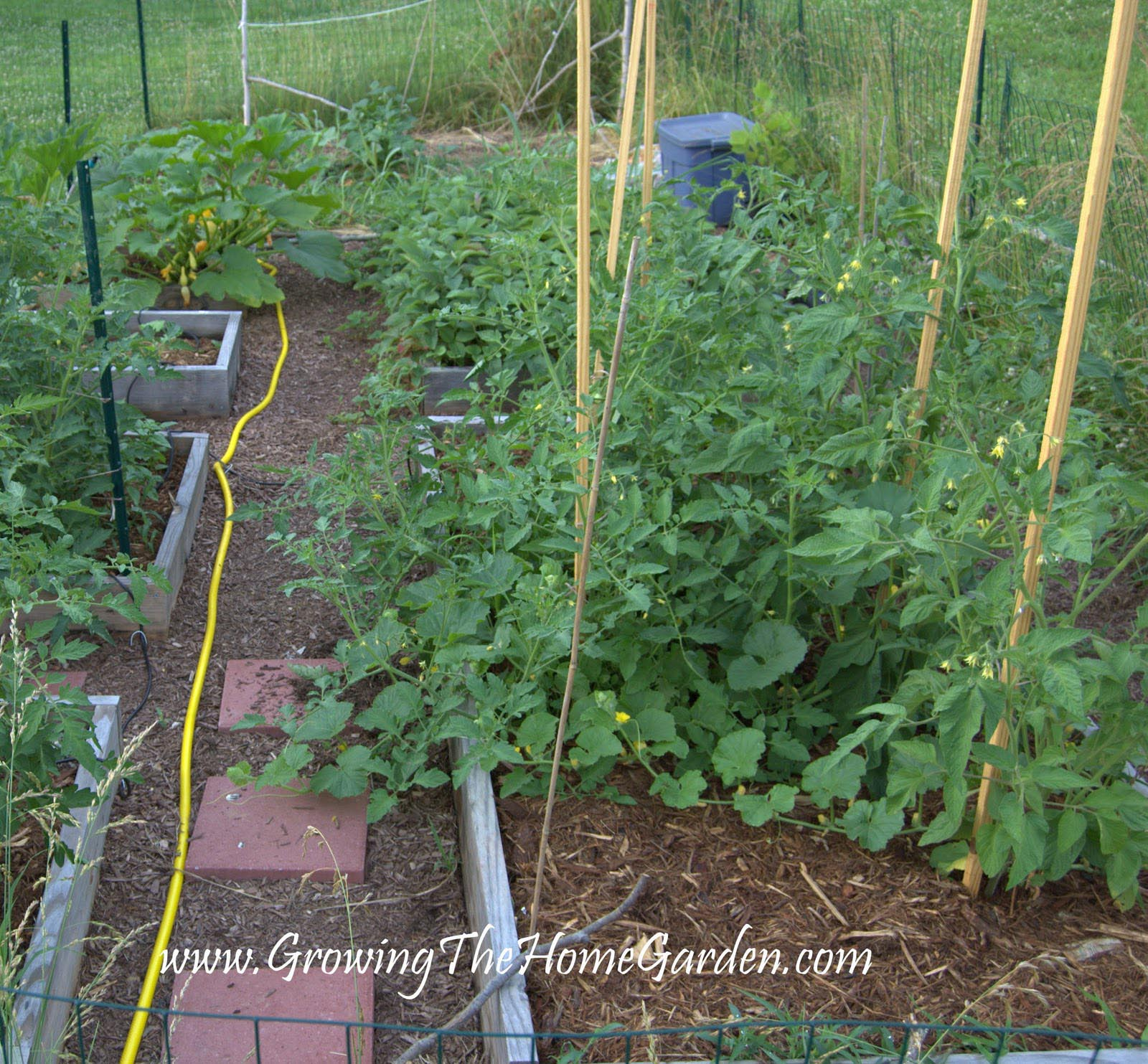 Tips for Raised Bed Vegetable Gardening