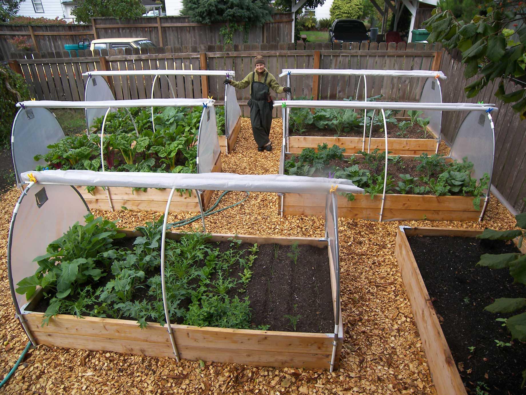 Vegetable Box Garden Plans