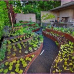 Vegetable Garden Container Ideas
