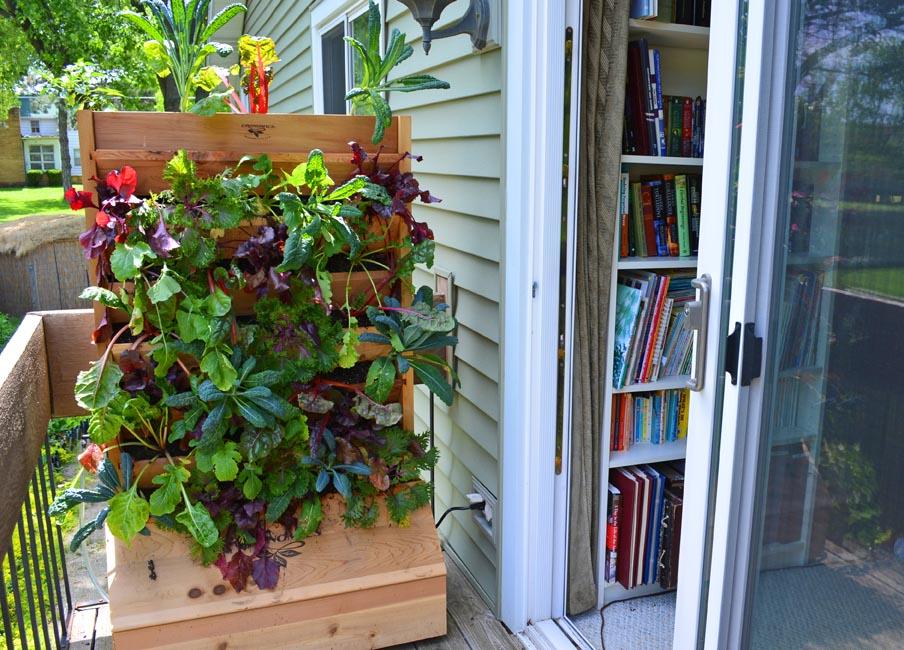 Vegetable Garden on a Balcony