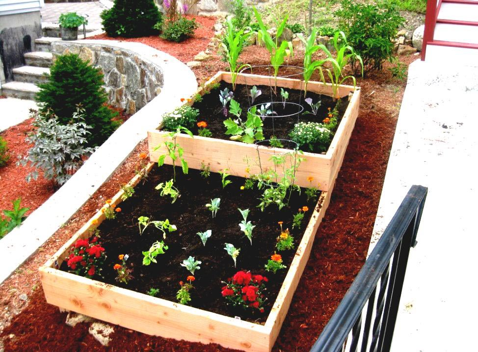 Vegetable Garden on Patio