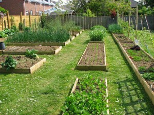 Vegetable Garden Planner Software Free